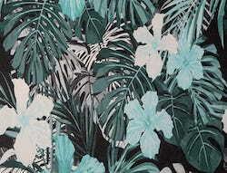 Tropic05
